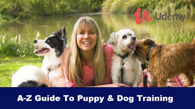 Dog Training - Puppies - A-Z Guide To Puppy & Dog Training
