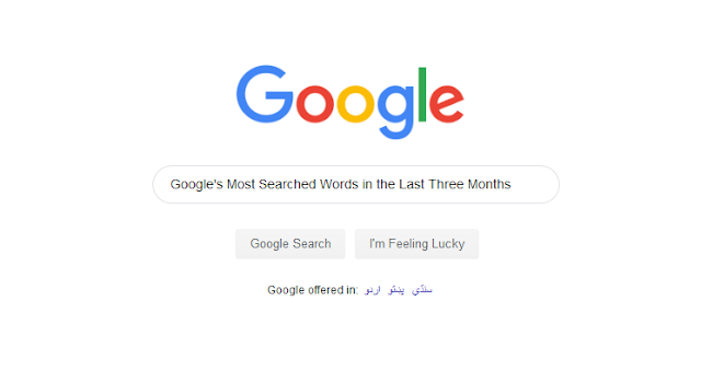 top google searches in 2019