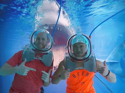 shark photo underwater lounge