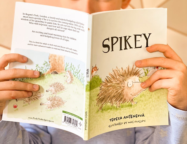 Imaging showing a child's hands holding up a copy of the book