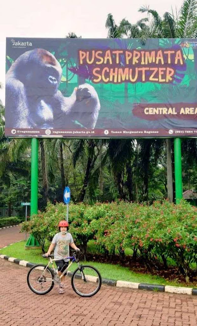bersepeda gowes di kebun binatang ragunan nurul sufitri travel lifestyle blogger panasonic bianch