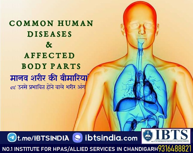 This post describes a wide range of diseases that affect the different parts of the human body.