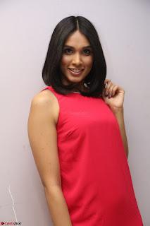 Spatika Surapaneni in Red Tight Dress at FBB Miss India 2017 finalists at Telangana auditions Feb 2017 (62).JPG