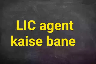 What Is LIC Agent In Hindi