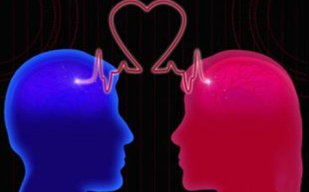 Εγκέφαλος: Ο γεννήτορας του έρωτα και ο μεγάλος αδικημένος της ημέρας του Αγ. Βαλεντίνου