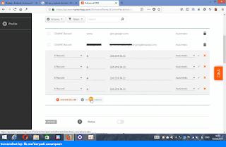 Namecheap Advanced DNS fill new four A Records