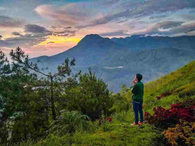5 Wisata Rumah Pohon di Malang Paling Instagramable