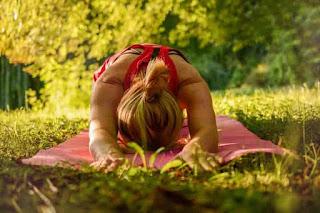 योग क्या है ? What is yoga योग का संक्षिप्त विवरण ।