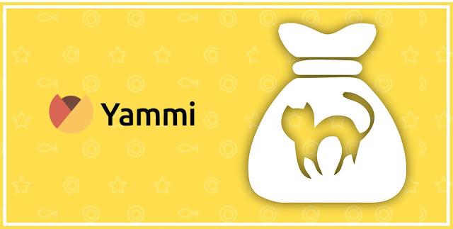 Yammi инвестиции отзывы