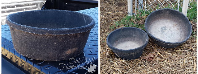 What worn-out equipment needs to be replaced on your homestead?