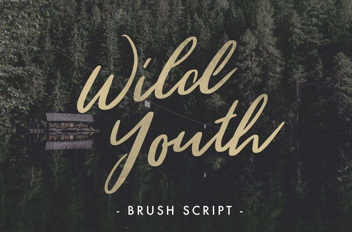 Download Font Terbaru 2016 - Wild Youth Font