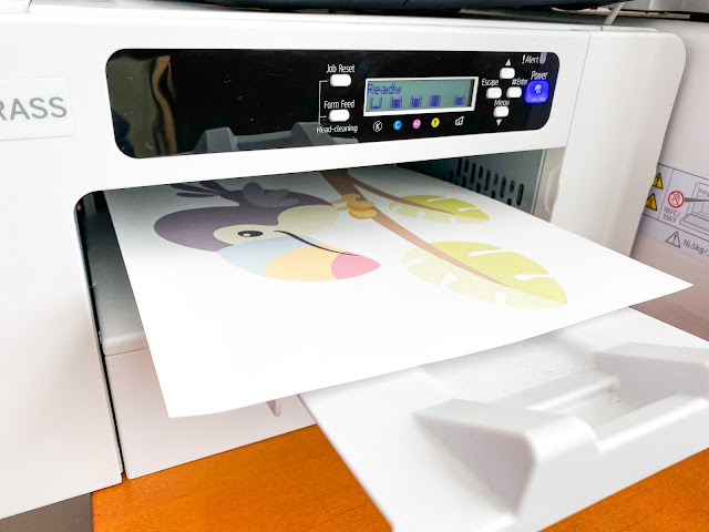 Sawgrass, Silhouette and Sublimation, Sublimation Printing, sg500, sg1000