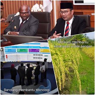 Ridwan Kamil Umumkan Kerjasama Bandung - Merauke
