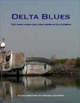 Delta Blues Available Now