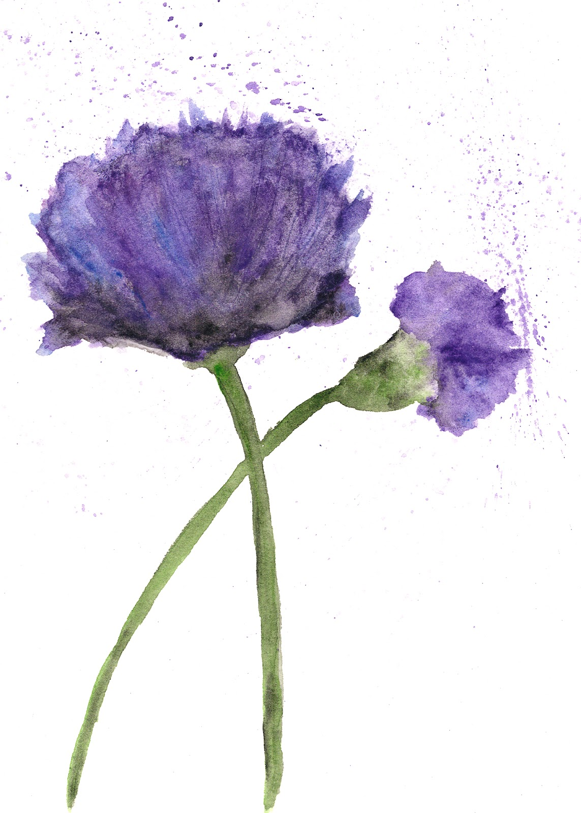 Thimble Sparrow Watercolor Purple Poppies