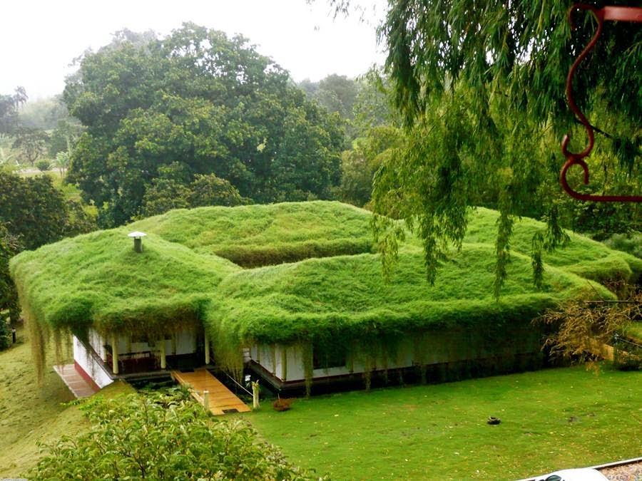 Go Green Traditional Gr Roofs Of Norway Or Sod Are Common On The Faroe Islands West These Have Begun To Reear