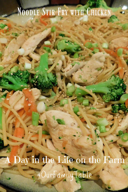 Noodle Stir Fry with Chicken pin