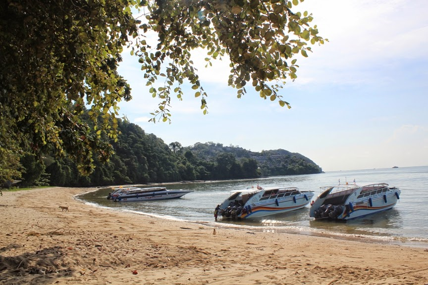 Cherry Berry : Phi Phi Island Day Tour (Thailand, Day 3)