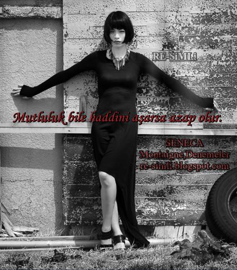 mutluluk bile haddini aşarsa azap olur SENECA Montaigne,Denemeler re-simli.blogspot.com