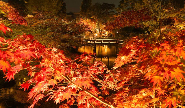 Eikando Zenrin-ji, Kyoto: The Temple of Maple Leaves