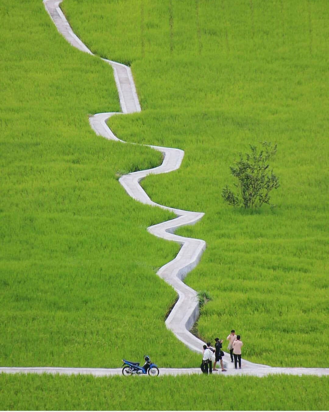 Wisata Jalan Setapak di Ngarai Sianok Bukit Tinggi