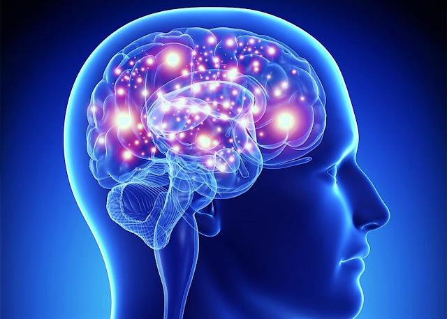 """""""Интерфейс мозък-машина"""" преобразува мозъчните вълни в изречения"""
