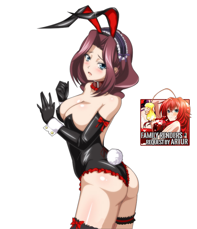 DxD cards [Rabbit] - Burent