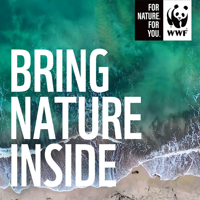 WWF Soundscape Playlist Brings Nature Inside @WWFSouthAfrica #NatureMatters