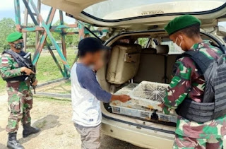 Bravo, Satgas Pamtas Yonif Mekanis 643/Wanara Sakti menggagalkan penyelundupan 150 ekor burung kacer dari Malaysia di jalan lintas batas Indonesia-Malaysia