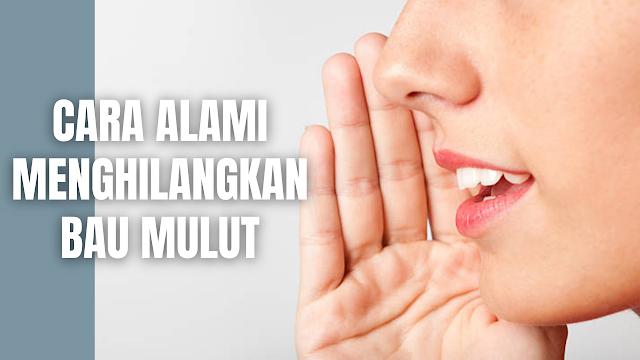 Cara Alami Menghilangkan Bau Mulut Bau mulut adalah suatu aroma tidak sedap yang muncul pada mulut. Hal ini terjadi akibat dari bakteri berkembang biak sehingga bau mulut pun menjadi tidak sedap. Berikut ini adalah cara alami menghilangkan bau mulut :  Susu Untuk Menghilangkan Bau Mulut Sebuah penelitan membuktikan bahwa susu memiliki kandungan yang mampu menghilangkan bau mulut akibat dari mengonsumsi makanan berbau menyengat. Selain susu produk olahan susu berupa yoghurt memiliki kandungan probiotik yang dapat membantu mengurangi jumlah bakteri penyebab bau mulut. Cara menggunakannya cukup dengan meminum sekali sehari secara rutin.    Jeruk Untuk Menghilangkan Bau Mulut Jeruk memiliki kandungan vitamin C yang berfungsi meningkatkan produksi air liur. Dengan meningkatnya produksi air liur, bakteri penyebab bau mulut akan banyak dibuang dari mulut. Serta ada penelitian yang menyatakan bahwa vitamin C bermanfaat untuk mencegah radang gusi dan sariawan. Cara menggunakannya cukup dengan mengonsumsi sekali sehari secara rutin.    Teh Hijau Untuk Menghilangkan Bau Mulut Teh hijau memiliki kandungan zat yang bersifat antibakteri dan antioksidan, serta terbukti mampu mengurangi peradangan dan menghilangkan bau mulut. Cara menggunakannya cukup dengan meminum sekali sehari secara rutin.    Daun Sirih Untuk Menghilangkan Bau Mulut Daun sirih sering dipakai untuk obat herbal dan secara tradisional daun sirih banyak digunakan dengan cara dikunyah. Daun sirih memiliki efek antibakteri dan antiradang yang dapat membantuk menjaga kesehatan gigi dan mulut, sehingga melalui efek ini juga dapat mengatasi bau mulut. Cara menggunakannya cukup dengan meminum air rebusan daun sirih sekali sehari secara rutin.    Akar Manis Untuk Menghilangkan Bau Mulut Akar manis memiliki kandungan senyawa antibakteri yang dapat menghilangkan bau mulut, meredakan sariawan, dan mencegah kerusakan gigi dan gusi. Ekstrak akar manis bisa ditemukan pada berbagai produk obat herbal, baik dalam bentuk gel, tabl