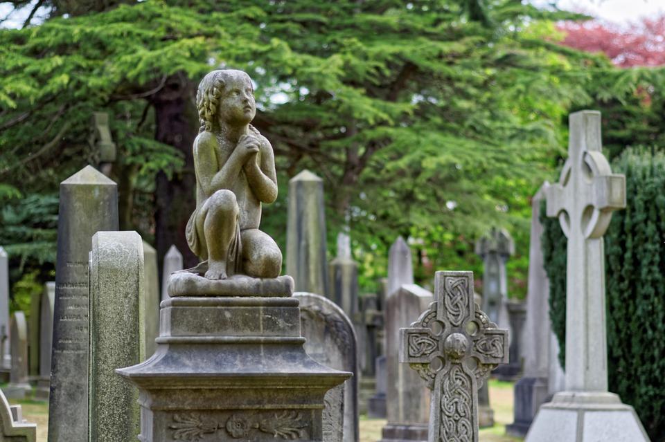 Мне приснилось будто я еду в автобусе а он поехал каким-то странным маршрутом и ехал рядом с кладбищем… и даже проехал по одной могиле.