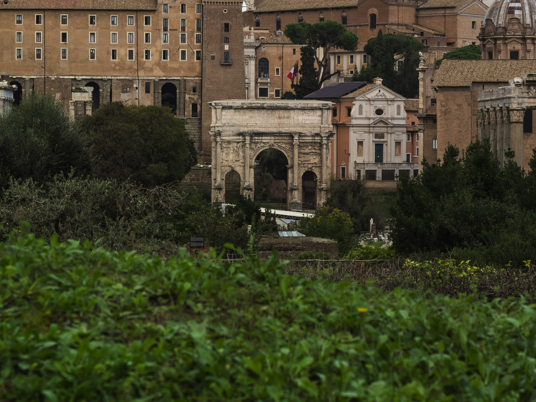 View of the Arch of Septimius Severus in the Roman Forum from the Palatine Hill.