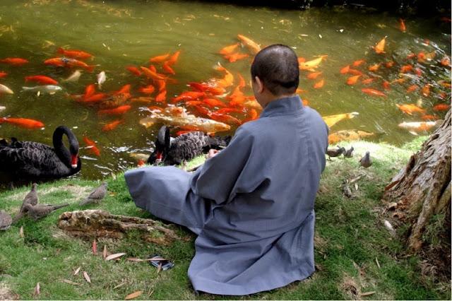 Японские мудрецы подсказали, как исполнять свои мечты