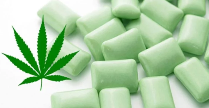 Cannabis Chewing Gum To Relieve The Pain Of Fibromyalgia. Would You Like To Try It?
