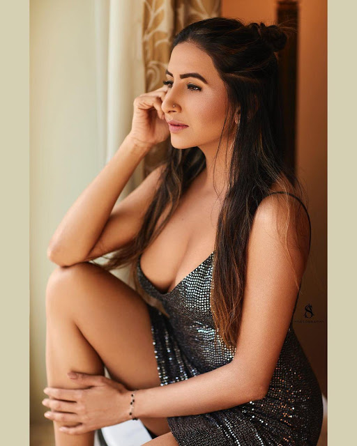 Television Actress Hansi Parmar Hot Pictures Navel Queens