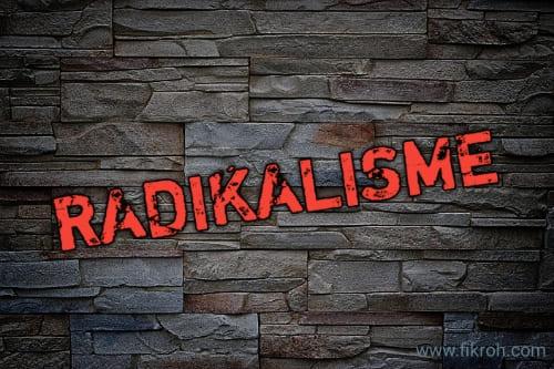 MUI Kecam Menag soal 'Radikalisme Masuk Lewat Good Looking-Hafiz'