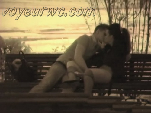 Day Watching 13 (Voyeur sex in public place young lovers romantic spot hidden camera)