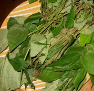 uziza leaves for white soup