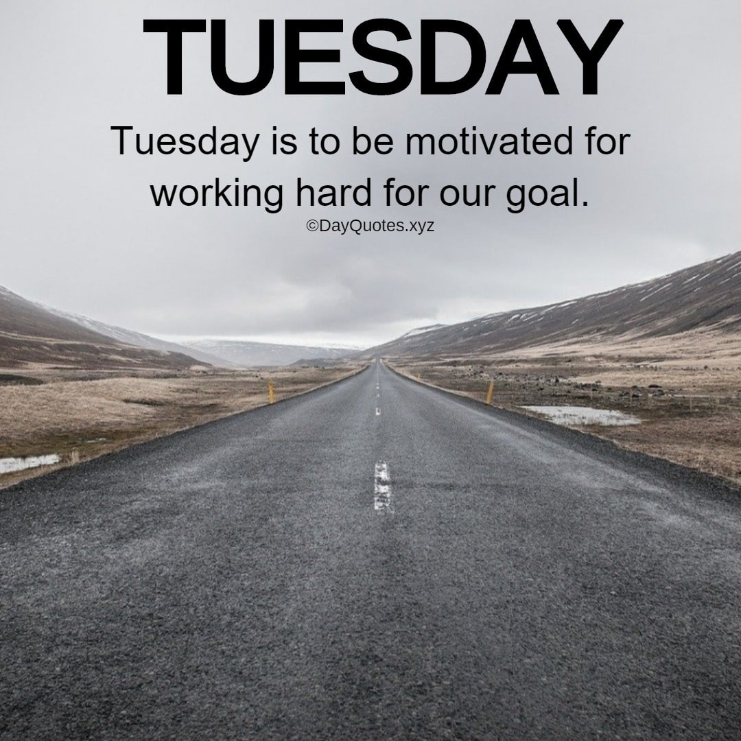 Best Tuesday Quotes To Share With Others