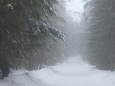 zima na Babiej Górze, zimowy spacer, walka na śnieżki, zabawa na śniegu