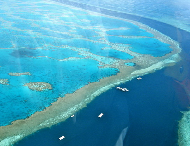Xvlor Great Barrier Reef is spectacular snorkeling and scuba diving at Coral Sea