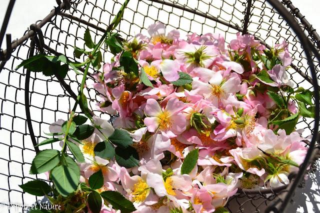 Confit de fleurs d'églantier © Popote et Nature