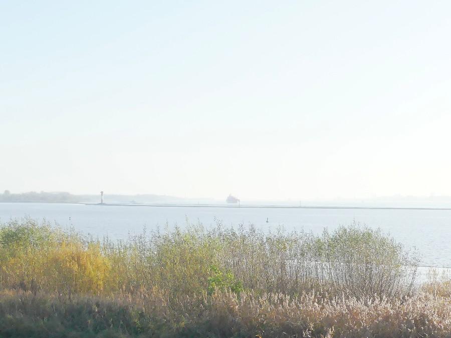 Elbe, stadersand