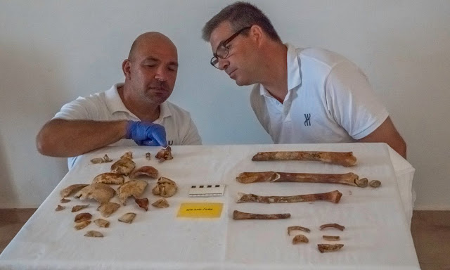 Antikythera shipwreck yields ancient human bones