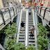 Shoppings volverán a reducir su horario de atención hasta el próximo 10 de abril