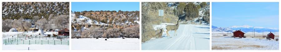 Paysages enneigés du Colorado