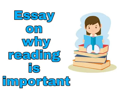 Essay on why reading is important