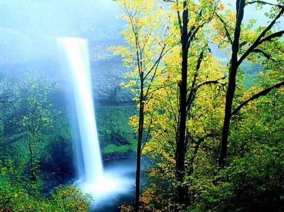Pemanfaatan Permasalahan dan Usaha Pelestarian Kekayaan Alam Dunia
