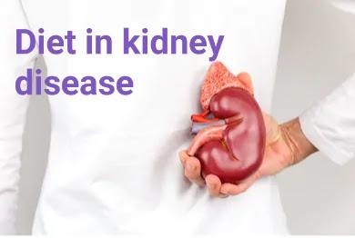 Diet in kidney disease