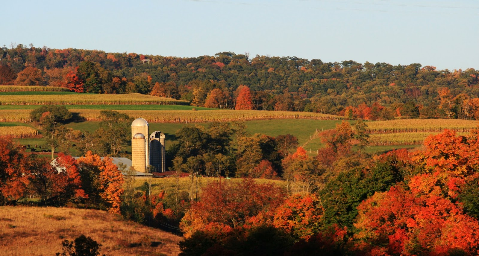 The Daily Suitcase Fall Foliage In The Mid Atlantic